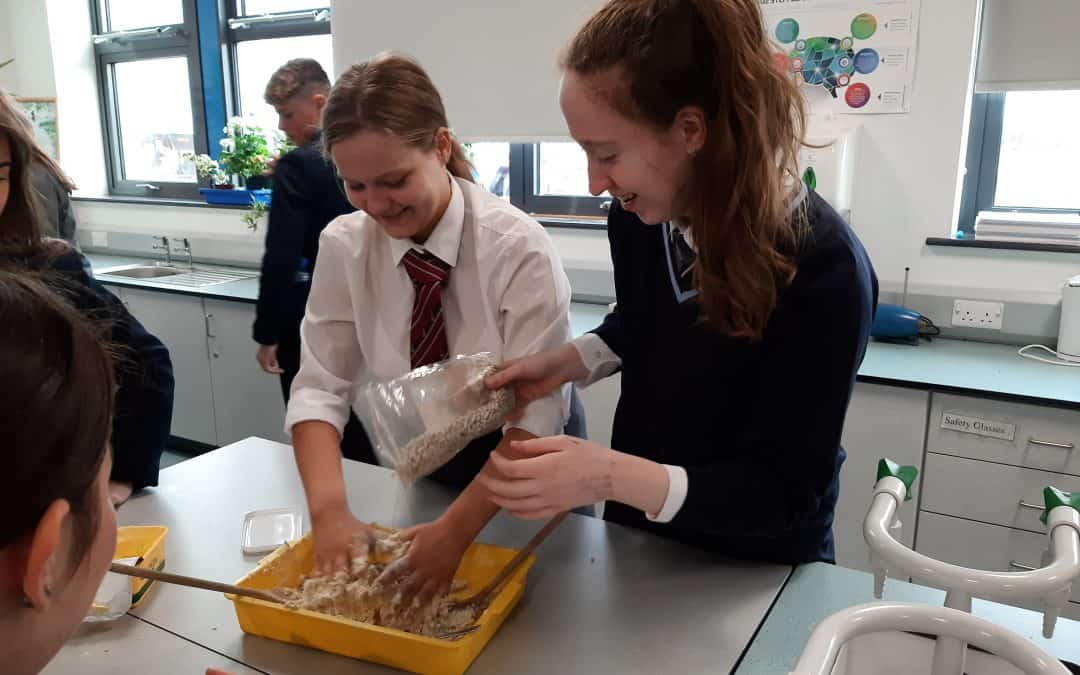 Biodiversity project with St. Patrick's Academy
